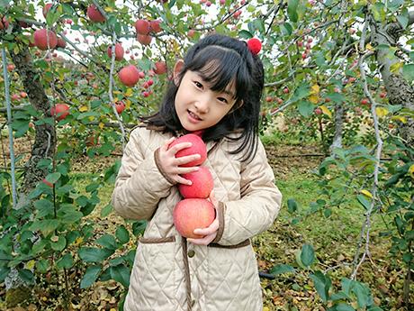 リンゴを持つ女の子