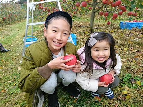 姉妹でなかよくリンゴ狩り