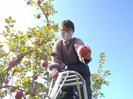 収穫祭2020